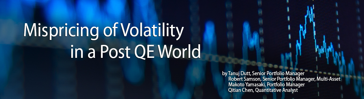 Mispricing of Volatility in a Post QE World